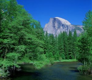 『ヨセミテ国立公園』(アメリカ合衆国)