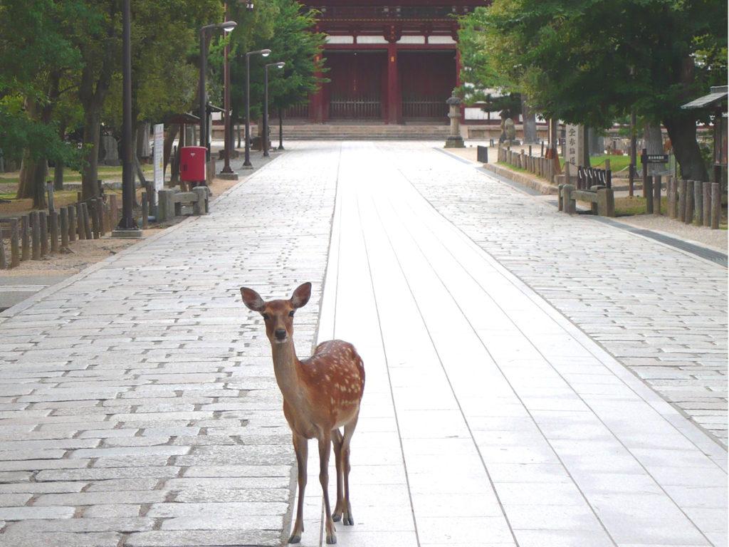 『古都奈良の文化財』(日本国)