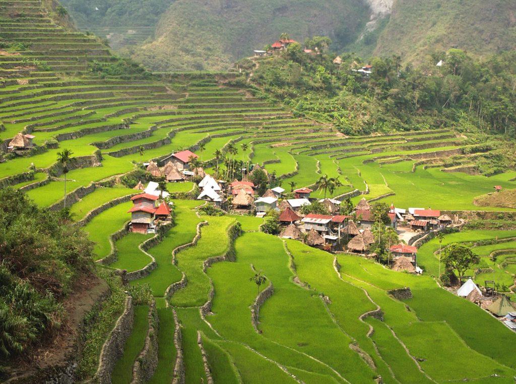 『フィリピンのコルディリェーラの棚田群』(フィリピン共和国)